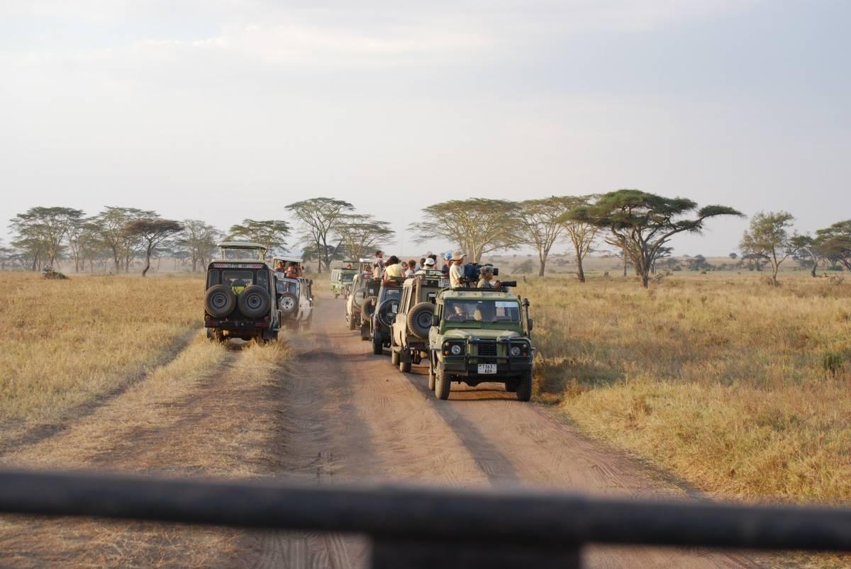 Afrique Août 2009 - photos de René 311