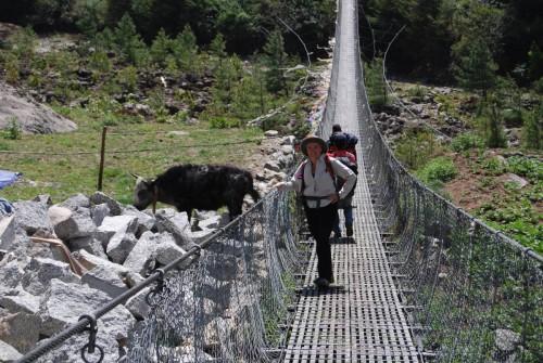 René Népal 2010 103